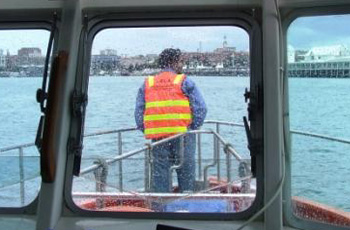 portofgeelong security